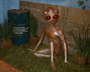 Incidente alieno di Varginha