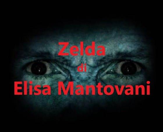 Zelda di Elisa Mantovani